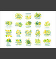 lemonade 100 percent pure lemon set for label vector image vector image