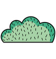 natural bush plant flat design vector image