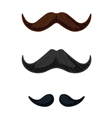 three english style mustaches vector image vector image