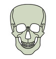 cartoon skul icon vector image
