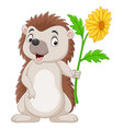 cartoon little hedgehog holding a flower vector image vector image