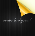 curved background vector image