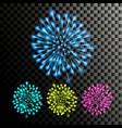 firework festive carnival night sky vector image vector image
