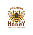 honey bee icon for organic product label vector image vector image