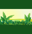jungle plants landscape background vector image vector image