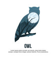 owl double exposure vector image