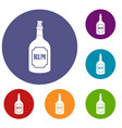 rum icons set vector image vector image