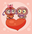two cute owls are sitting on a big red heart and vector image vector image