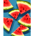 watermelon on blue vector image