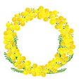 wreath of yellow acacia flowers twigs vector image vector image