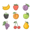 Fruit and berry set vector image