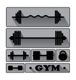Gym Fitness icons vector image