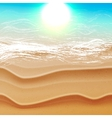 Beach and tropical sea with sun vector image