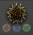 firework night carnival light isolated on vector image vector image