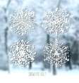 Ink hand drawn snowflakes set vector image vector image