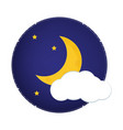 moonlight night vector image