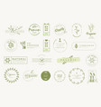 set labels and stickers for organic products vector image vector image
