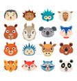set of cartoon cute baby animal faces isolated vector image