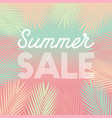 summer sale tropical paradise background vector image