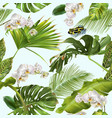 tropical orchid frog pattern vector image vector image
