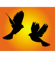 two flying birds vector image vector image