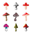 amanita fly agaric toadstool mushrooms fungus vector image