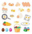 egg easter food and healthy eggwhite or vector image
