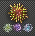 firework holiday anniversary salute burst vector image vector image