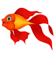 Cute golden fish cartoon vector image vector image