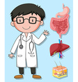 Doctors and human organs vector image vector image