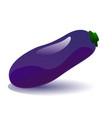 ripe eggplant vector image vector image