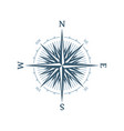 blue wind rose vector image vector image