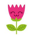 kawaii flower tulip leaves cartoon vector image