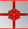 red ribbon bow isolated on background bow vector image