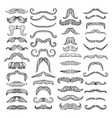 retro style of hairs mustache of men vector image vector image
