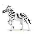 african animal cute funny zebra icon isolated on vector image vector image