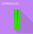 asparagus icon flat style vector image