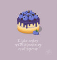 cakes blueberries chocolate syrup vector image vector image