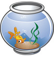 cartoon gold fish in a bowl vector image vector image