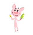 cute cartoon pig with christmas tree isolated on vector image vector image