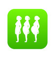 pregnancy stage icon green vector image