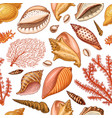 seamless pattern shells seaweed and mollusca vector image