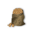 a sack of potatoes on white background vector image vector image