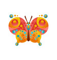 colorful butterfly insect on a vector image vector image