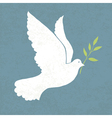 dove with olive vector image vector image