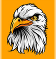 eagle head vector image