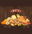 nut pile as banner with kernel and shell sign vector image vector image