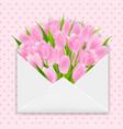pink tulip vector image