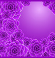 beautiful violet rose flower background vector image vector image