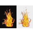 burning campfire with smoke vector image vector image